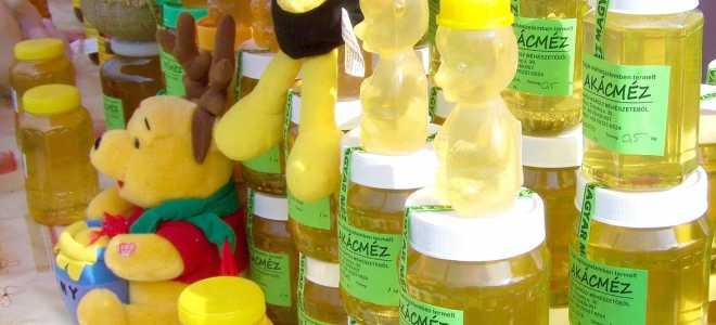 Хранение меда в пластиковой посуде, банках, бутылках, контейнерах