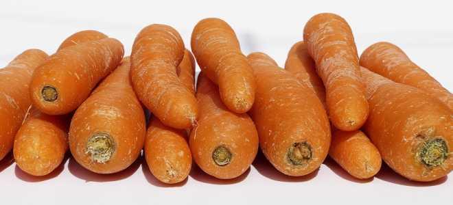 Можно ли хранить морковь в вакуумных пакетах
