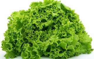 Как правильно заморозить листья салата на длительное хранение – лучшие рецепты использования