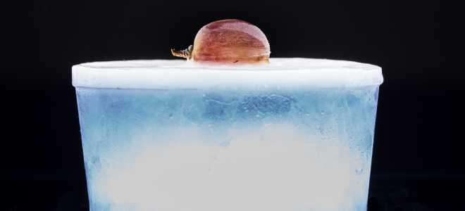4 способа заморозки винограда на зиму