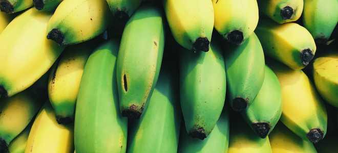 Как сохранить бананы в домашних условиях свежими и почему бананы нельзя хранить в холодильнике