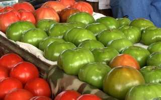 Правильное хранении зеленых помидор, чтобы быстрее покраснели и не потеряли вкуса и вида
