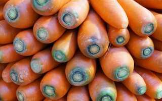 Нужно ли обрезать ботву у моркови для зимнего хранения в погребе