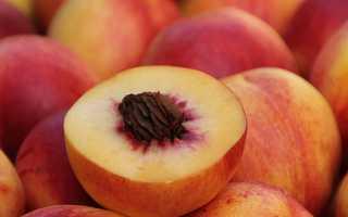 Как подольше сохранить свежие персики в домашних условиях