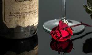 Сроки годности разных видов вина в закрытых бутылках и домашнего
