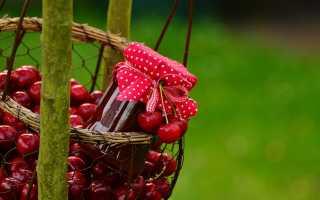 Сколько можно хранить вишневое варенье с косточками и компот из вишни с косточками