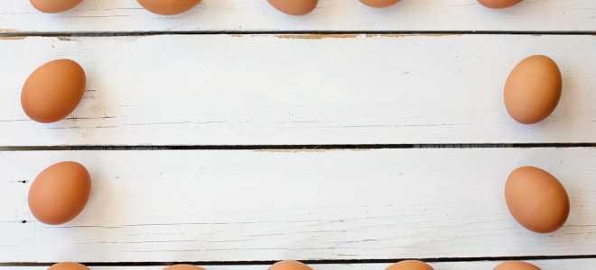 Как сохранить яйца без холодильника