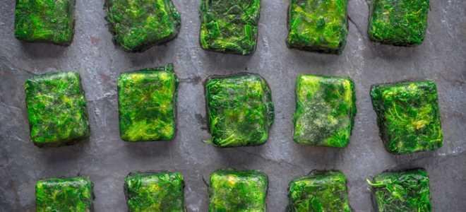 Способы заморозки зелени на зиму