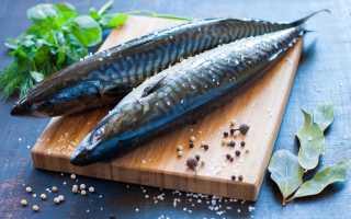 Как надолго сохранить соленую рыбу в домашних условиях?