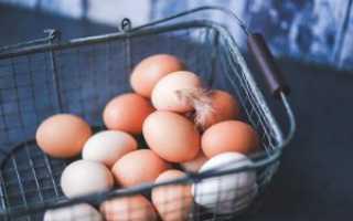 Нужно ли мыть яйца перед хранением в холодильнике: советы специалистов