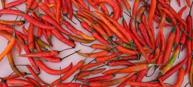 Стоит ли замораживать горькие сорта перца и как это лучше сделать