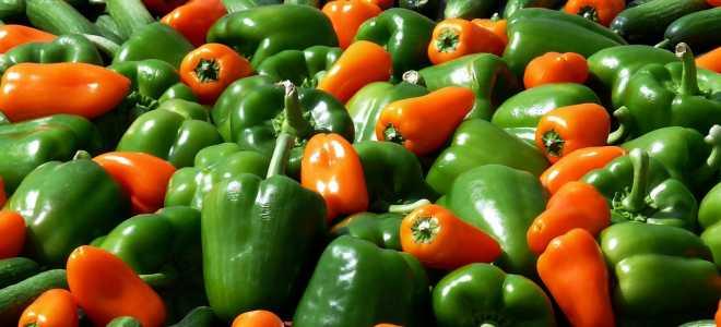 Как высушить болгарский сладкий перец дома?