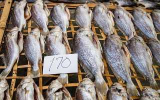 5 способов сохранить вяленую рыбу в домашних условиях надолго