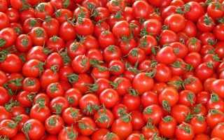 Проверенные рецепты заморозки свежих томатов на зиму – все возможные способы