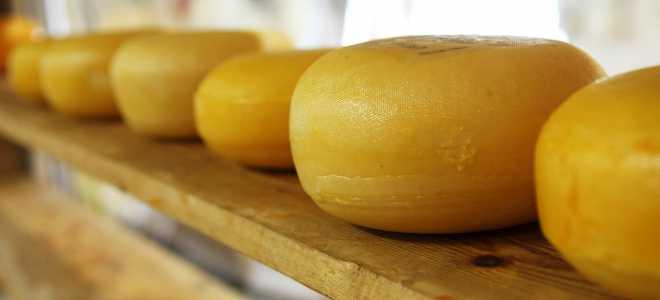 Правила и сроки хранения сыров в холодильнике