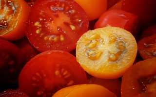 Можно ли замораживать помидоры-черри в морозилке?