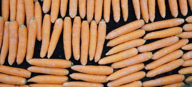 Зачем моют морковь перед длительным хранением