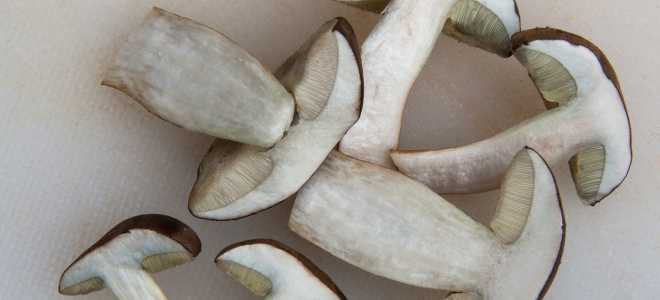 Сколько и как хранить вареные грибы