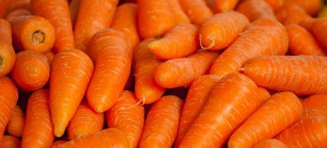 Можно ли хранить морковь в холодильнике и почему она вянет?