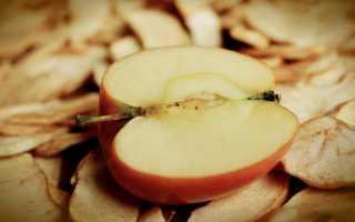 Правила и преимущества способа сушки яблок в аэрогриле