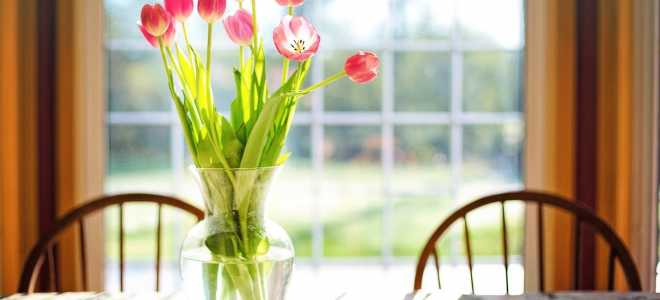 Правила и секреты долгого хранения букета тюльпанов