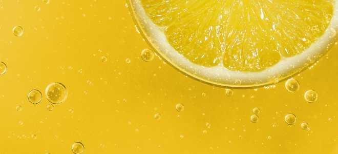 Как правильно хранить лимоны в домашних условиях