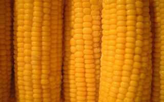 Заморозка кукурузы на зиму – лучшие способы и рецепты