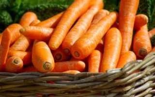 Зачем моют морковь перед длительным хранением – советы экспертов