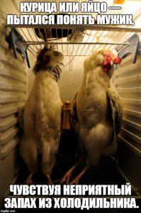 Мем про холодильник