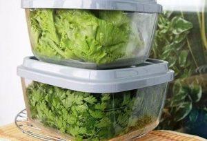 Зелень в пластиковых контейнерах