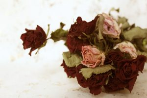 как засушить букет цветов
